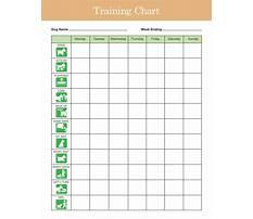 Best Dog training download
