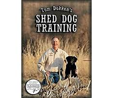 Best Dog training dvd amazon