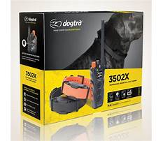 Best Dog training dvd review