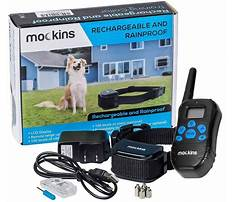 Best Dog training e collars