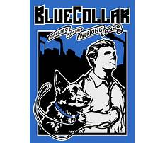Best Dog training echo park