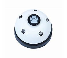 Best Dog training equipment wholesale