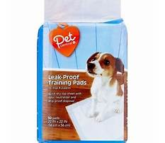 Best Dog training pads cvs