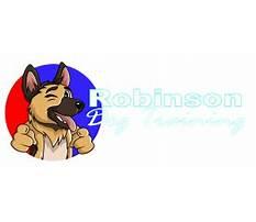 Best Dog training robinson tx