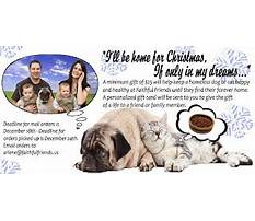 Best Dog training schools in wilmington delaware.aspx