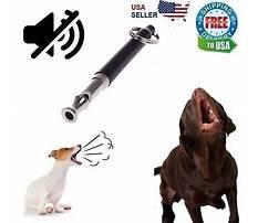 Best Dog training sound effects