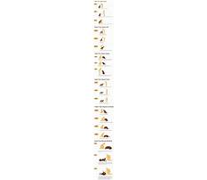 Best Dog training to stop barking.aspx