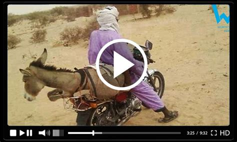 Download Free Funny Video Clips