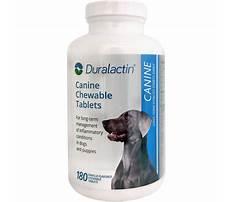 Best Duralactin for dogs