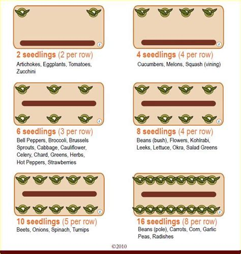 Earthbox Planting Chart