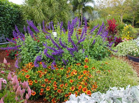Easy Care Perennial Garden Plans