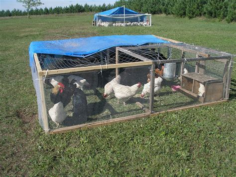 Easy Chicken Tractor Plans