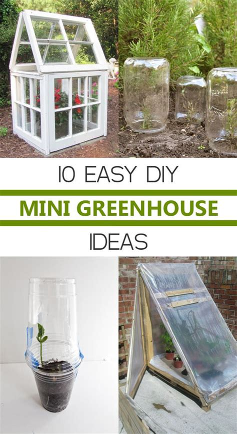 Easy Diy Mini Greenhouse
