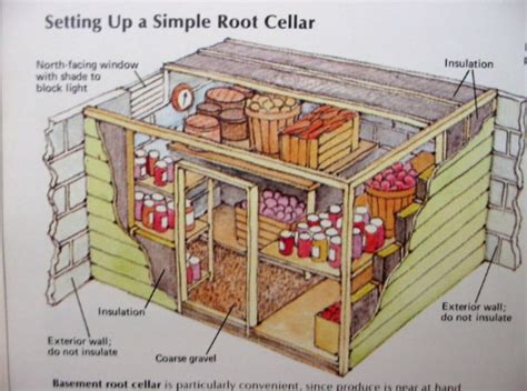 Easy Root Cellar Plans
