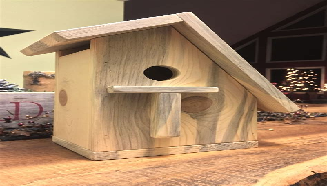 Easy-Wooden-Bird-House-Plans