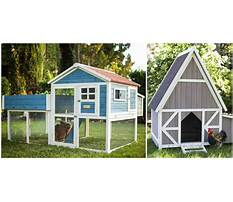 Best Easy clean chicken coops for sale