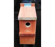 Best Easy to build bird house plans