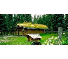 Best Eco garden sheds