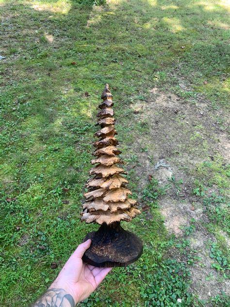 Evergreen-Woodworking