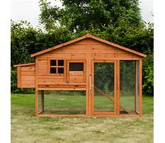 Best Extra large chicken coop