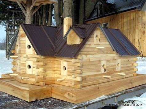 Extreme-Birdhouse-Plans