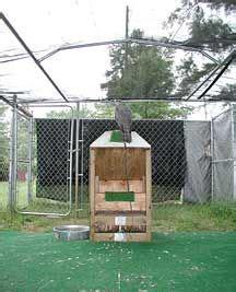Falconry-Jump-Box-Plans