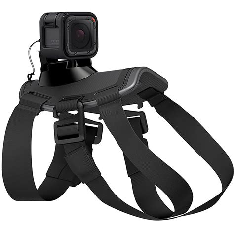 Product-Brownell Fetch Dog Harness Gopro.