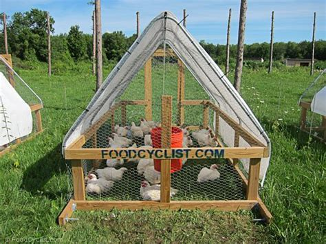 Foodcyclist-Chicken-Tractor-Plans
