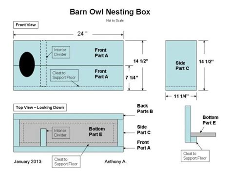 Free Barn Owl Nesting Box Plans