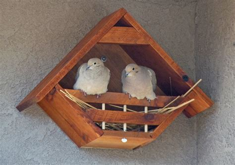 Free Dove Birdhouse Plans