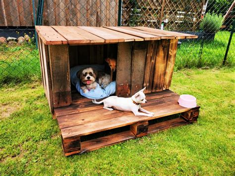 Free Easy Large Dog House Plans Using Pallets