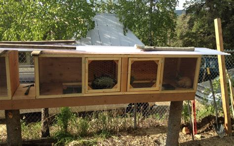 Free Indoor Rabbit Hutch Building Plans