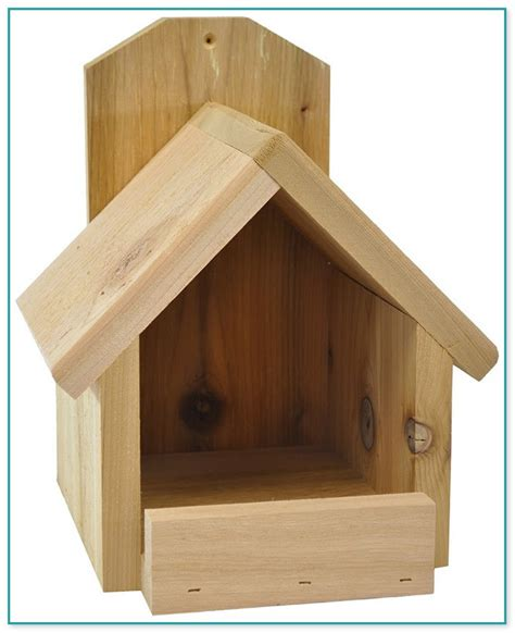 Free Red Bird House Plans