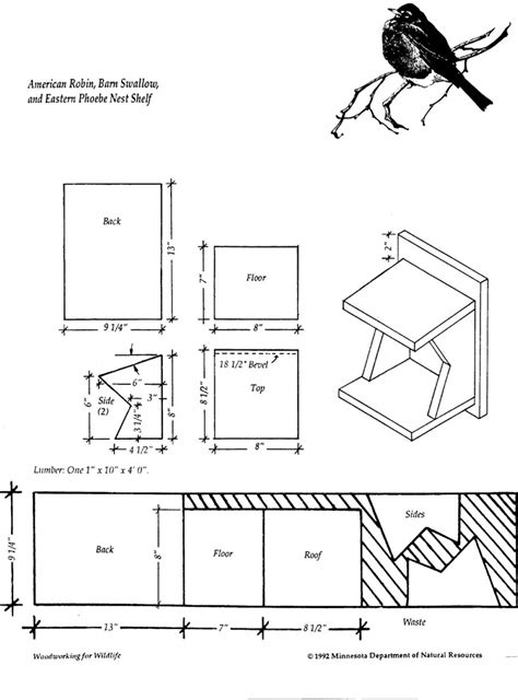 Free Robin Bird House Plans