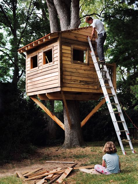 Free Tree House Building Plans Building Treehouses