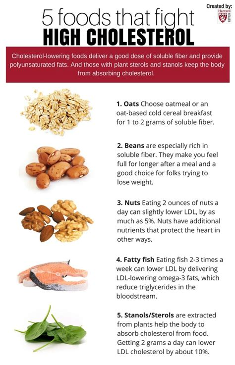 Free What Foods Are Good For High Cholesterol For Men 40