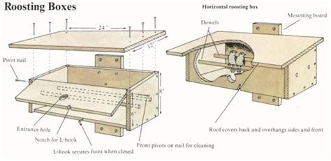 Free-Bird-Winter-Roosting-Box-Plans