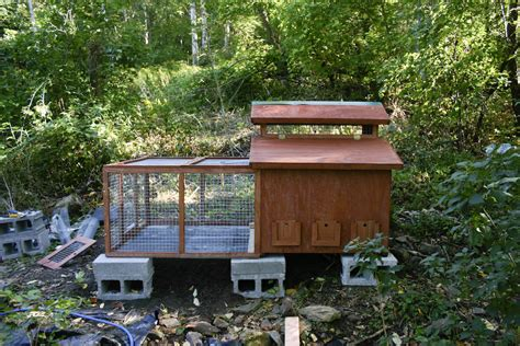 Free-Chicken-Coop-Plans-For-Cold-Areas