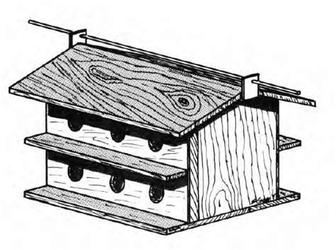 Free-Homing-Pigeon-House-Plans