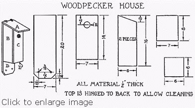 Free-Woodpecker-House-Plans