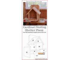 Best Free birdhouse plans for cardinals