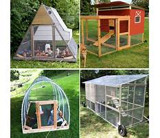 Best Free chicken tractor plans for meat chickens