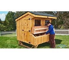 Best Free plans to build a chicken coop