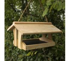 Best Free plans wooden bird feeders