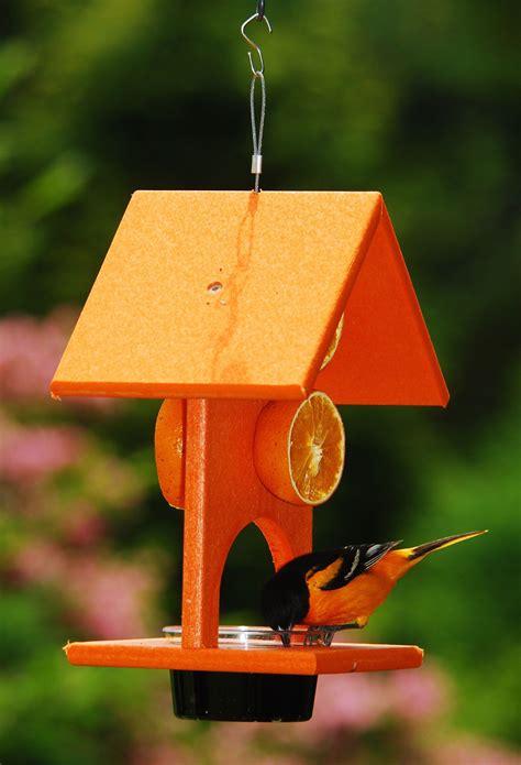 Fruit-Bird-Feeder-Plans