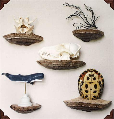 Fungi-Shelves-Diy