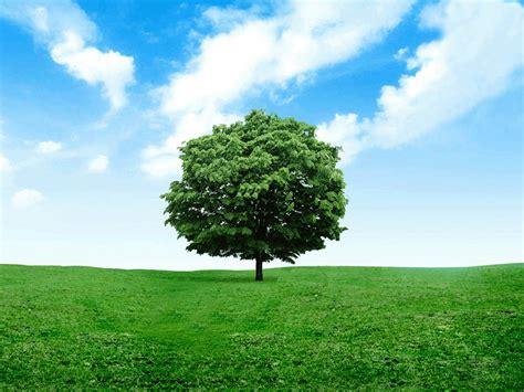Gambar-Tree