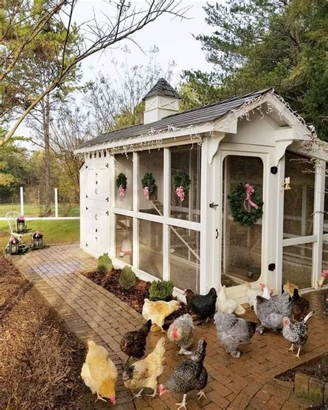 Garden Chicken Coop Design