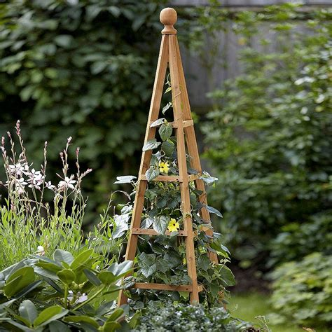 Garden Obelisk For Climbing Plants