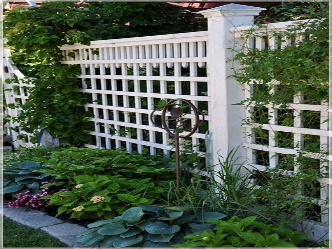 Garden-Fence-Plans